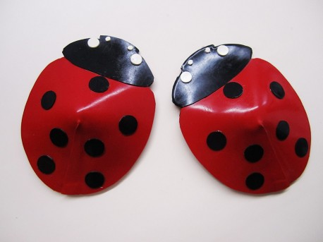 Ladybird Latex Pasties